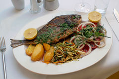 Dinner is served. Grilled fishplate in a greek restaurant Royalty Free Stock Photo