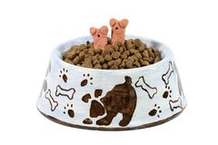 Dinner is Served!. Isolated dish with treats and dog food Stock Images