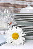 Dinner set with camomile. Close-up Royalty Free Stock Images