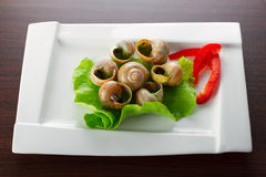 Dinner with snails on the plate Royalty Free Stock Photography