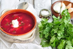 Dinner, Ukrainian soup from vegetables Borsch Royalty Free Stock Image