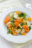 Dinner - vegetables with chicken Royalty Free Stock Photo