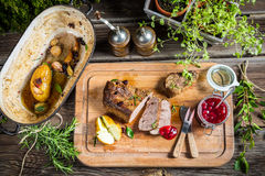 Dinner with venison served in the forester cottage Royalty Free Stock Photos