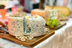 Dinner with wine, exquisite cheese, traditional food Royalty Free Stock Images