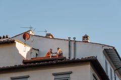 dinning在一个屋顶的未认出的夫妇在佛罗伦萨 免版税库存图片