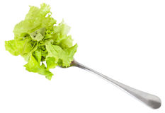 Dinning fork with fresh green lettuce isolated Royalty Free Stock Photography