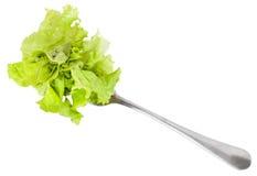 Dinning-Gabel mit dem frischen grünen Kopfsalat lokalisiert Lizenzfreie Stockfotografie