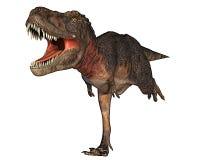 Dino dinosaur rex running for your life Stock Photos