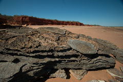 Dino fotspår Arkivbild