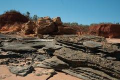 Dino fotspår Arkivfoton