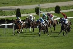 Dino joue le chemin dans la course de chevaux Image libre de droits