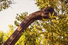 Dino land Stock Photo