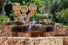 Dino Park av Algar spain Royaltyfria Foton