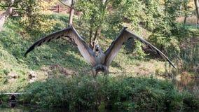 Dino Park Dinosaur image stock