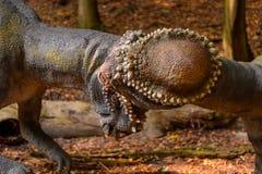 Dino park, Sistani Obraz Stock