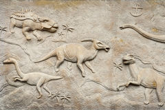Dino relief Royalty Free Stock Images