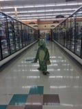Dino Shopper Imágenes de archivo libres de regalías