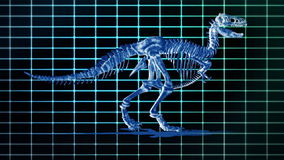 Dino T-Rex walking EKG background,loop, stock footage. Video stock video footage