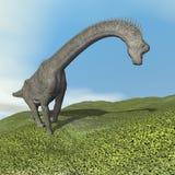 Dinoasaur брахиозавра - 3D представляют Стоковые Изображения RF