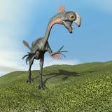 Dinoasaur Aucasaurus ревя - 3D представляют Стоковая Фотография