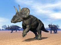 Dinoceratops dinosaur in the desert - 3D render Stock Photos