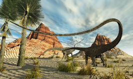Dinorama. Two Diplodocus dinosaurs search for food in a desert landscape Royalty Free Stock Photography