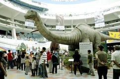 Dinos vivant Photos stock