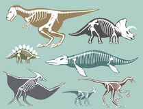 Dinosaurów kośców sylwetki ustawiają skamieniałej kości tyrannosaurus Dino prehistorycznej zwierzęcej kości wektorową płaską ilus Zdjęcie Stock