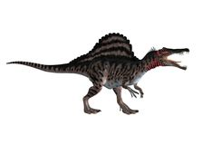 Dinosaur 10. 3D render of a walking dinosaur with a red neck Royalty Free Stock Photography