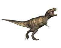 Dinosaur 11 Illustration Stock