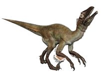 Dinosaur 12 Royalty Free Stock Photo