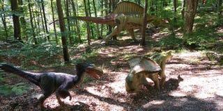 dinosaur photos stock