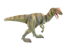 Dinosaur. On the white background Stock Images