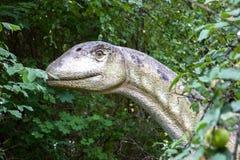 dinosaur Fotografia de Stock