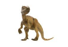dinosaur immagini stock libere da diritti