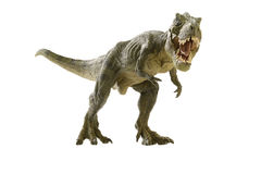 dinosaur images stock