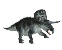 Dinosaur 9. 3D render of a small dinosaur with horns Stock Images