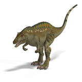 Dinosaur Acrocanthosaurus. With Clipping Path over White Royalty Free Stock Images