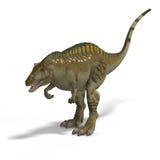 Dinosaur Acrocanthosaurus Royalty Free Stock Images