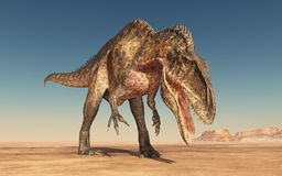 Dinosaur Acrocanthosaurus in the desert. Computer generated 3D illustration with the dinosaur Acrocanthosaurus in the desert Royalty Free Stock Image