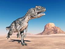 Dinosaur Allosaurus Stock Images