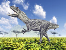 Dinosaur Allosaurus Royalty Free Stock Photo