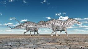 Dinosaur Amargasaurus Royalty Free Stock Images