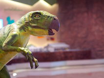 Dinosaur animal reptile figure colorful painted head Stock Images