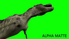 Dinosaur animation on green screen. GI realistic render and motion.  stock video