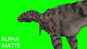 Dinosaur animation on green screen. GI realistic render and motion.  stock footage