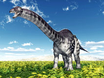Dinosaur Apatosaurus Royalty Free Stock Images