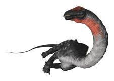 Dinosaur Apatosaurus Stock Photography