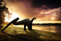 Dinosaur , Apatosaurus in the forest.  royalty free stock photo