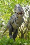 Dinosaur Attack in Jungle Stock Image